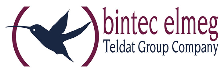 bintec Logo